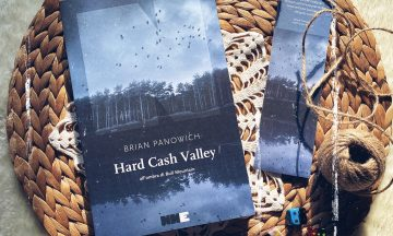 Hard Cash Valley all'ombra di Bull Mountain